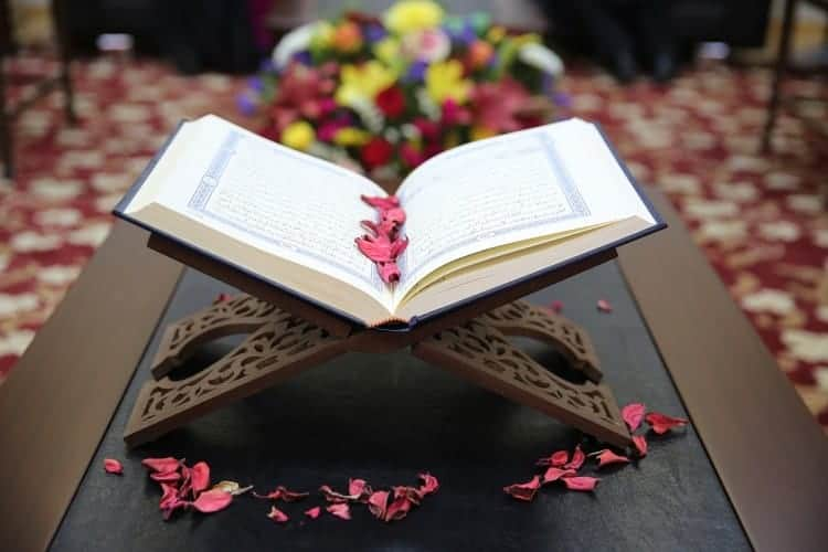 Why the Qur'ān Informs Us about Other Creatures